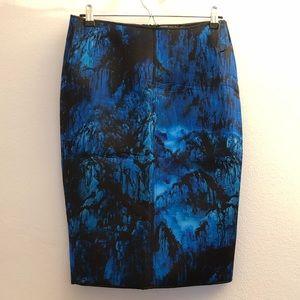 Zara Skirt Size L NWT